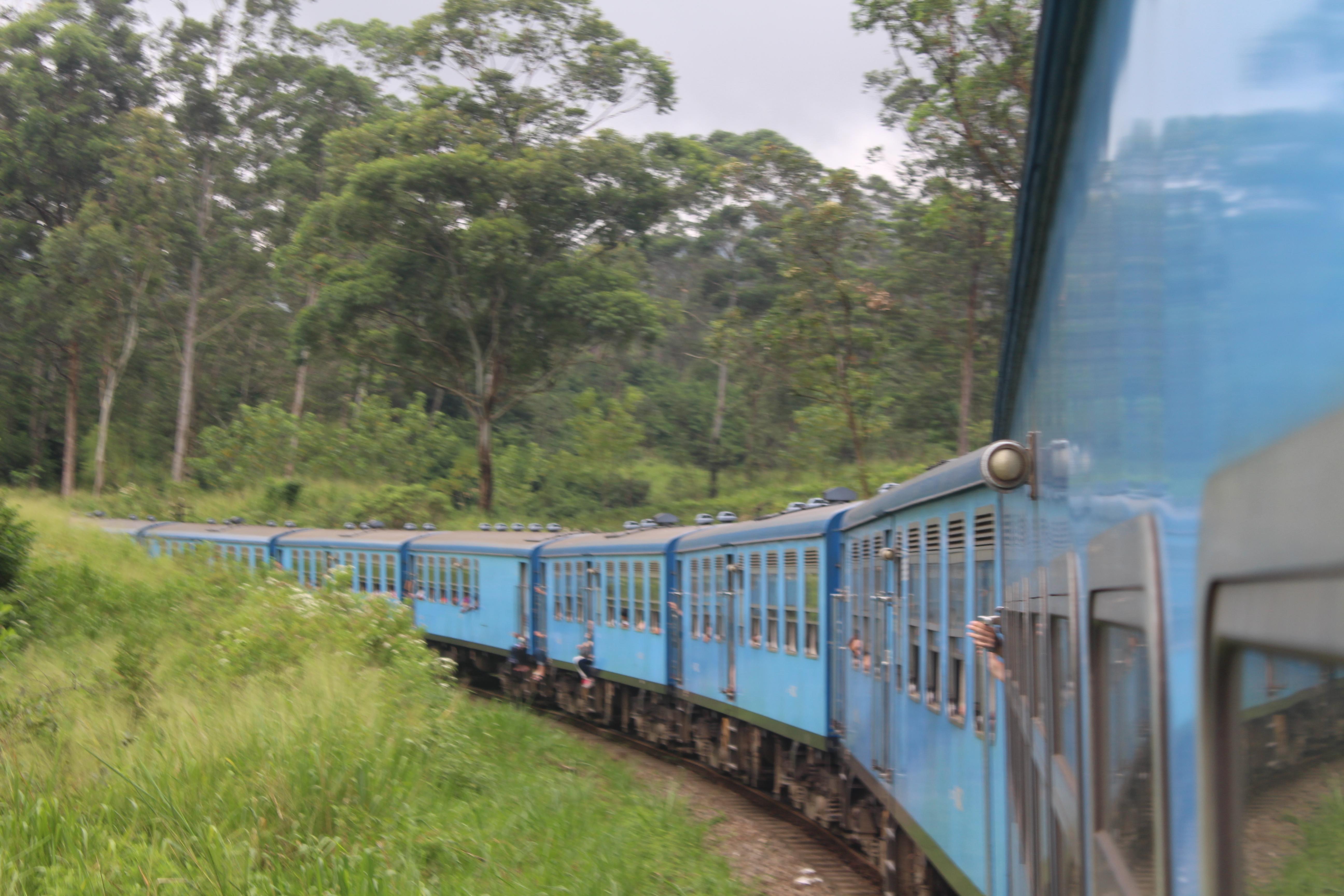 Tren a Nuwara Eliya. Plantaciones té. Sri Lanka