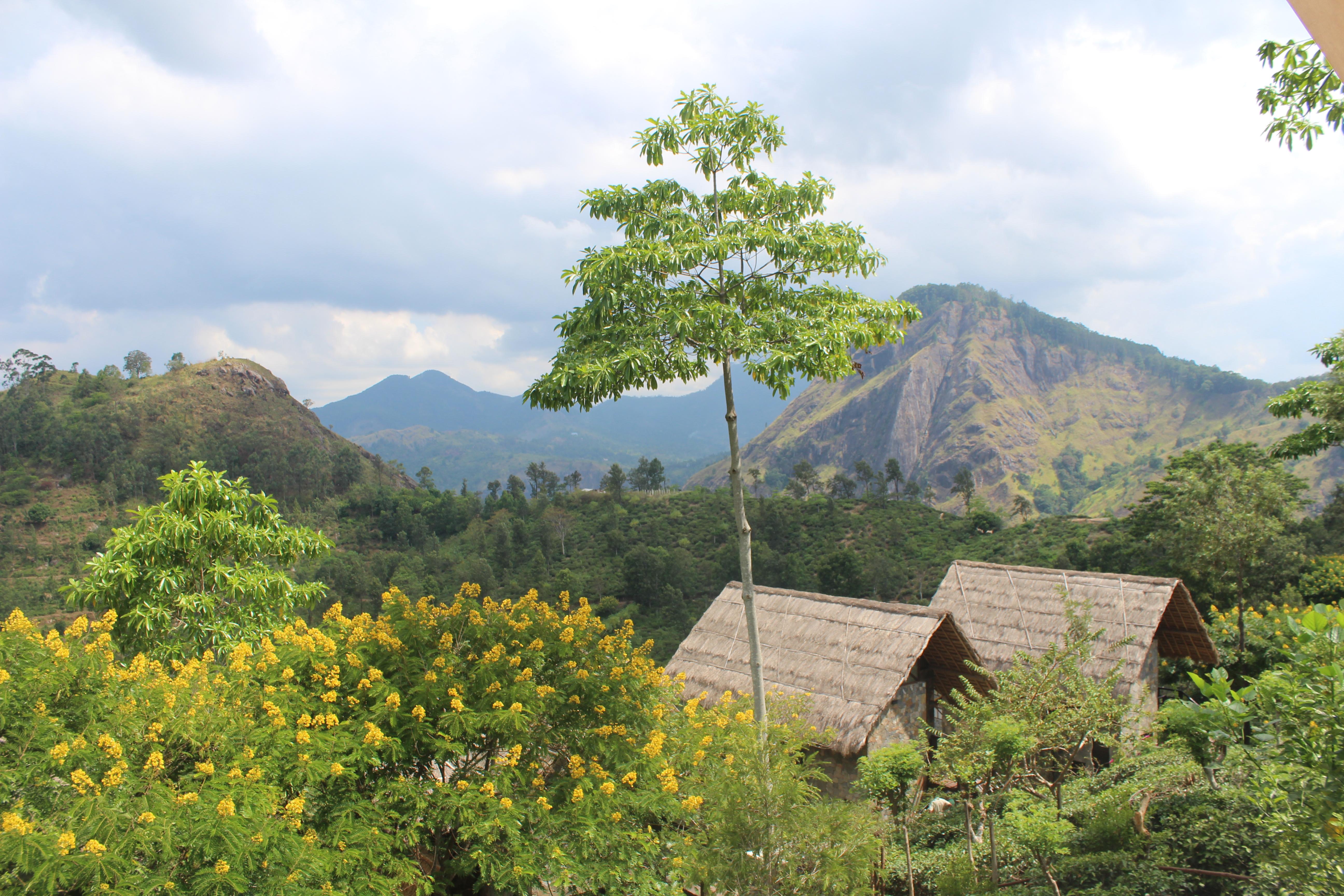 98 Acress Resort Ella - Sri Lanka